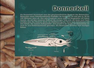 Postkarte Donnerkeil