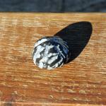 Möbelknauf aus einem polierten, versteinerten Seeigel