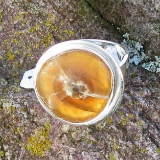Schicker Silberring mit einer polierten Donnerkeilscheibe
