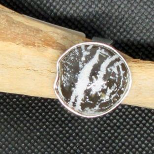 Schicker Fingerring mit einem in Silber eigefassten, polierten Stück Seeigel