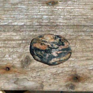 Möbelknauf aus einem Augengneis