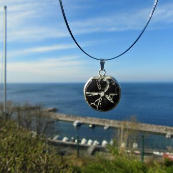 Unterseite eines versteinerten Seeigels, poliert, an einer Silberöse