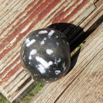 Möbelknauf aus einem polierten Kugelschwamm