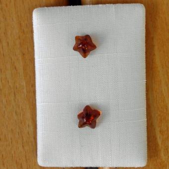 Ohrstecker mit Seesternen aus kognacfarbenen Bernstein
